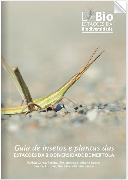 capa-livro
